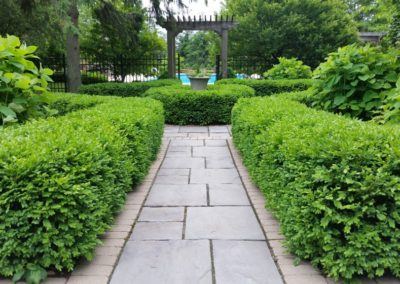 Full-Yard-hedge-walkway-trellis-min